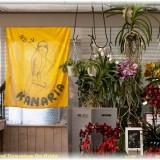 Kan vlag vglwk 0809mrt 2014